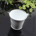 Weimanshop 10Pcs Bonbonnière Mini Seaux Mini Bucket en Métal Mariage Décoration 8 Couleurs de la marque Weimanshop image 1 produit