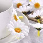 WILLBOND 100 Pièces Fleur de Marguerite en Tissu Blanc Têtes de Faux Fleurs 4 cm Artificielle Marguerites Artisanat pour Pâques Bonnet de Mariage Partie Décorations de la marque WILLBOND image 4 produit