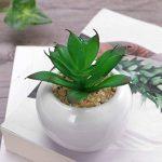 WINOMO 3pcs succulentes artificielles décoratives, Mini pot de fausses plantes avec des pots blancs de la marque WINOMO image 3 produit