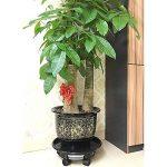 Zantec Chariot à roulettes Chariot rond de plante de résine naturelle avec des roues de roulette et un tiroir d'eau de la marque Zantec image 1 produit